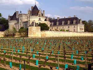 400px-Château_de_Breze_-_from_vineyard_(1_May_2006).jpg